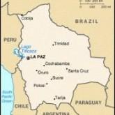 Bolivia: Eradication and Backlash