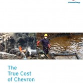 The True Cost of Chevron: An Alternative Annual Report