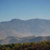 Will Cash Cool the Planet?