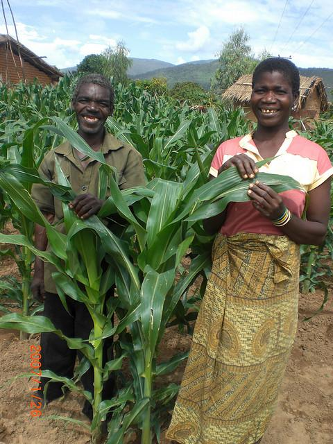 Food Sovereignty and Land Grabs In Africa