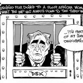 DSK's Defense by Array