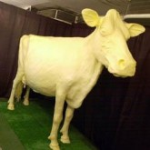 You Can't Milk a Butter Cow