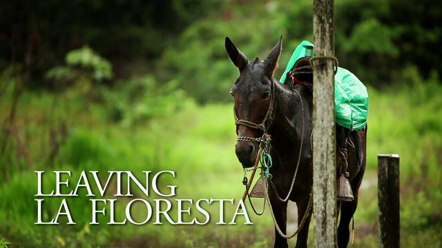 FILM: Leaving La Floresta