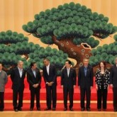The Puzzling Persistence of APEC