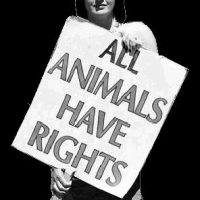 Animal-Rights Activists Like Me Aren't Terrorists