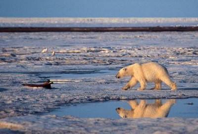 arctic-drilling-russia