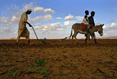African farmers