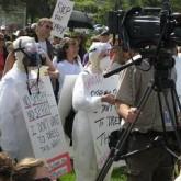 Let's Resist Herbicide-Resistant Crops