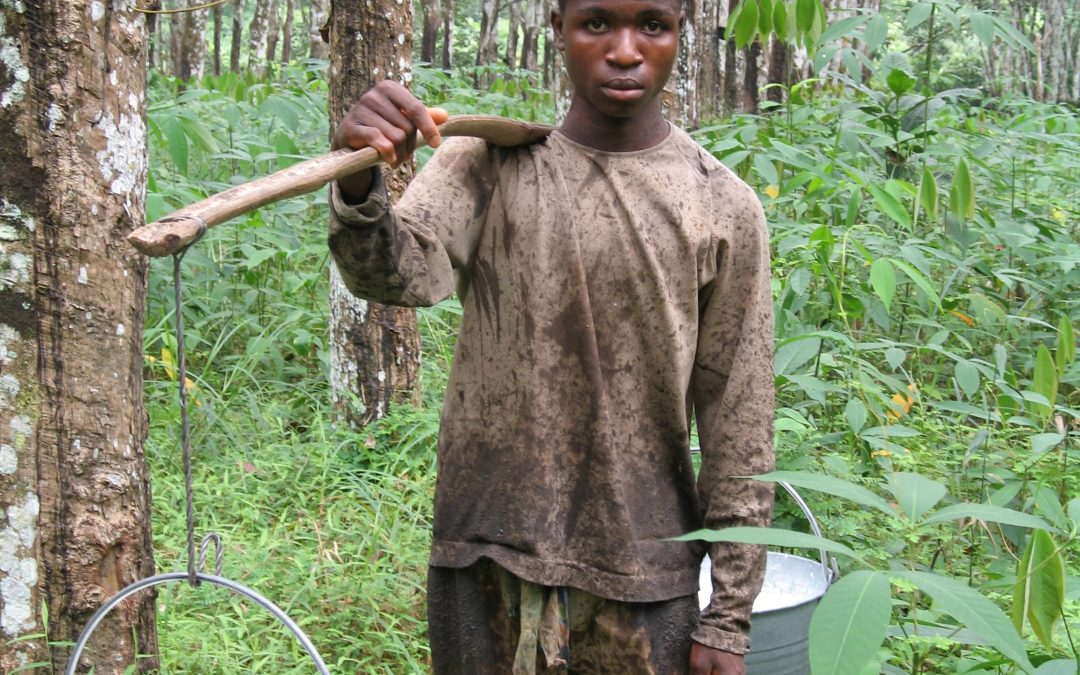 Liberia At the Crossroads: Extractive Industries, Land Grabs & Corporate Accountability