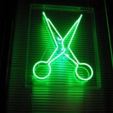 Green Scissors for Congress