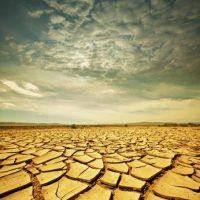 The Drought Lottery
