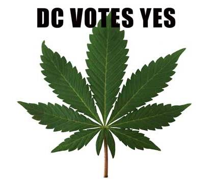 Pot is Passed in DC: What Now?