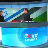Phyllis Bennis on CCTV