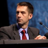 Senator Tom Cotton, sponsor of the 'Iran Letter'