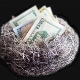 nest-egg-money