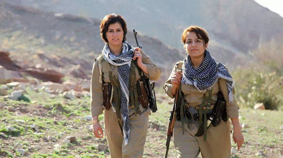 Brown Bag: The Kurdish Freedom Struggle in Perspective
