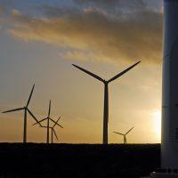 wind-renewable-energy